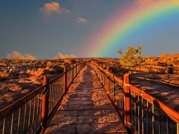 只有经历了风雨才能看见最美丽的彩虹励志说说