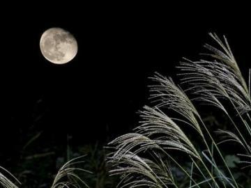 月亮会融化,我也会的暖心晚安心语