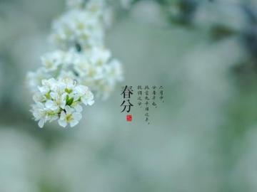 春分到,春光好,一起踏春的唯美说说