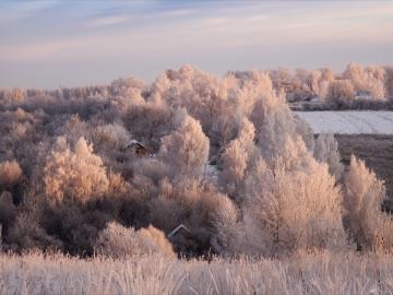 二十四节气霜降到了的祝福语