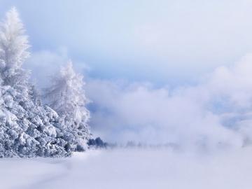 下雪天的表白情话说说 下雪天,多想和你一起走,一不小心就白了头