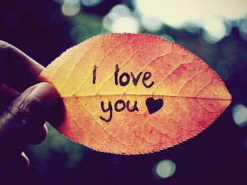 情人节最浪漫的情话节日说说 说给最爱的你听