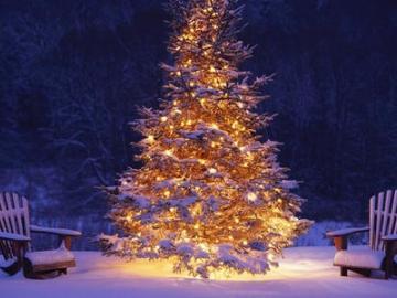 关于圣诞节发给对象的爱情句子