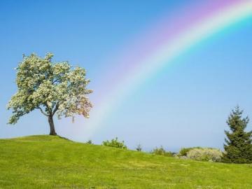 风雨过后一定会有彩虹的唯美说说