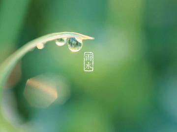 邂逅最美的二十四节气雨水古诗词