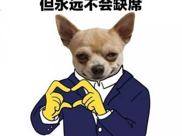 火爆全网的舔狗日记   做舔狗呢 最重要的就是开心
