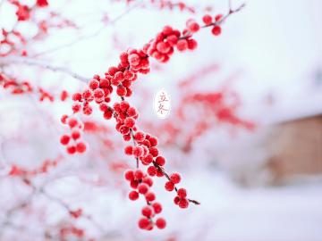 有关立冬节气的祝福说说