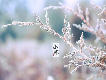 小寒时节绝美的诗词