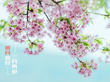 三月的尾声,和四月说一声你好的唯美句子