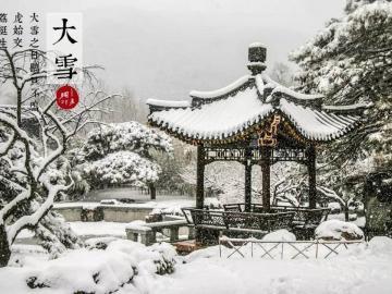 大雪时节雪花舞,漫天飘落祝福语