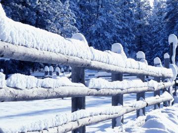 有关立冬节气的祝福短信