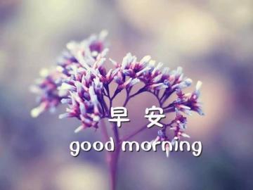 八月第一天励志早安心语