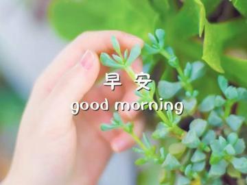 八月第一天温馨励志文艺早安语