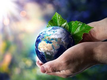6月5号世界环境日节日祝福语 让我们一起爱护我们的环境,从身边的小事做起