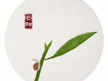 芒种时节的节日说说  芒种节到,要做一个忙人:忙着种下幸福