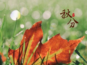关于秋分的心情早安短语