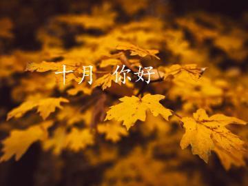 迎接十月,新的一月的励志说说