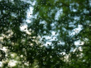 描写下雨天的文艺说说:有些人不需要姿态,也能成就一场惊鸿
