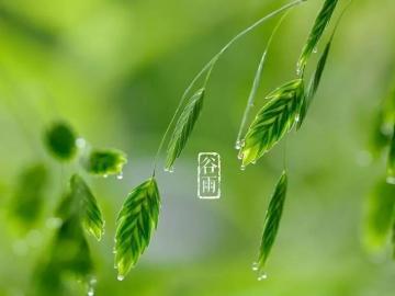 祝福谷雨节,幸福快乐多