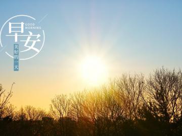 阳光明媚的早安暖心话   踏实而务实,越努力越幸运
