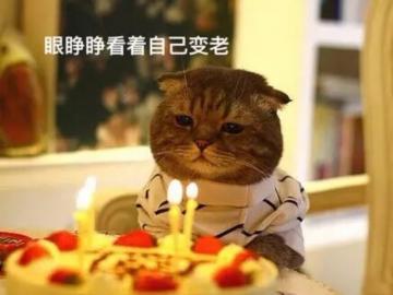 抖音上很火的生日祝福语