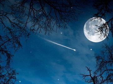 一个人看月亮伤感句子:月光再亮,终究冰凉