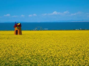 静待春暖花开,万物祥和人间安康的祝福说说
