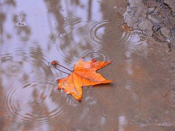 下雨天扎心的心情说说:平安夜到了,你是否还会像以前那样
