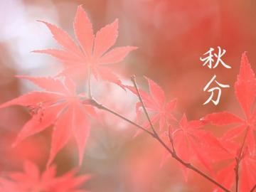 秋分时节暖心养生祝福说说