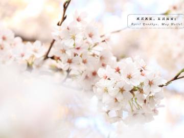 四月再见,五月你好触动心灵的励志说说