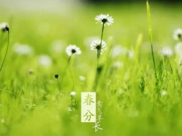 春分这些祝福语,让你如沐春风