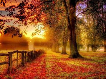 风起秋分至的唯美祝福说说