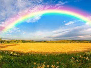 致自己的快乐说说:希望你是一个真开心的人,而不是假快乐的人