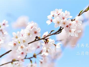 和着春风,沐着春雨,一起走进二月的唯美说说
