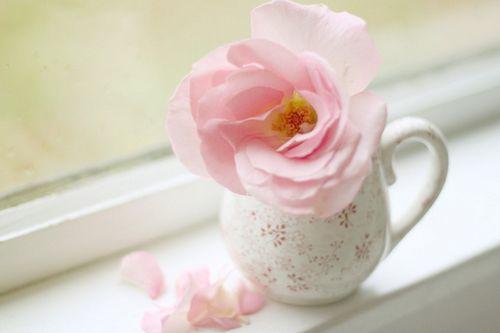 美好的一天简单朋友圈早安心语人生经典励志语录