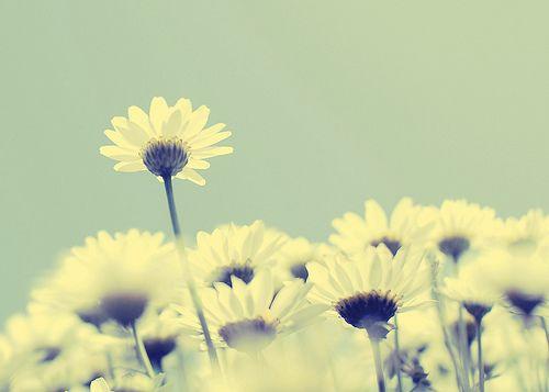 献给自己励志成长的早安心语经典语句说说心情