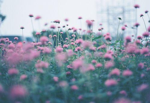 不勉强的伤心的说说签名大全 你笑我平凡外形不适合爱情