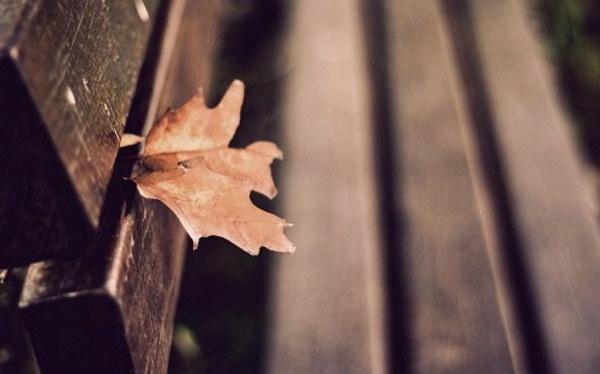 心伤的情感语录说说心情短语 想念变成怀念,心动变成心碎