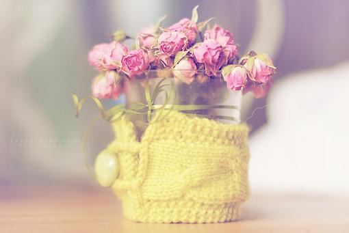 让人暖暖的治愈系温馨晚安心语图片 人生如茶,静心以对2