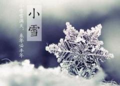 关于小雪的短的唯美句子个性签名说说心情 雪,温暖了整个冬天。