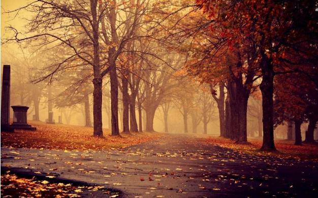 最痛最伤感会哭的句子说说心情 有些人不需说再见,就已离开了