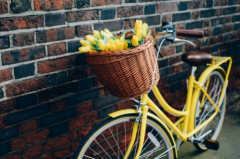 2019春天来啦发朋友圈该怎么写 关于春天的朋友圈说说句子