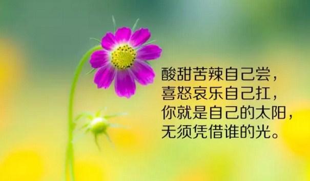 2019早安心语励志短句精选配图:如果不认命,那就去拼命