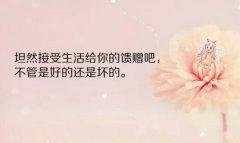 朋友圈2019早安心语励志短句精选配图:如果不认命,那就去拼命