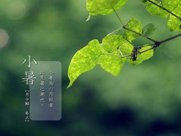 二十四节气小暑大暑经典谚语说说