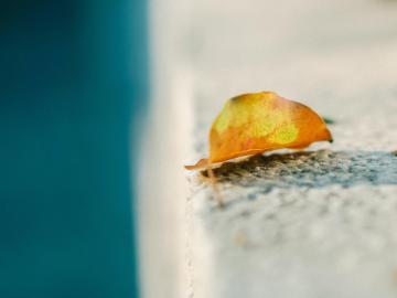 适合十月发的第一条朋友圈说说:人生没有重来的机会,心懒会毁了你的梦想