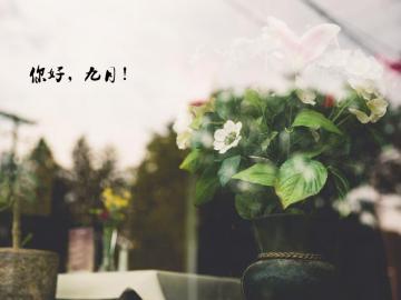 九月你好,温柔了岁月的唯美说说