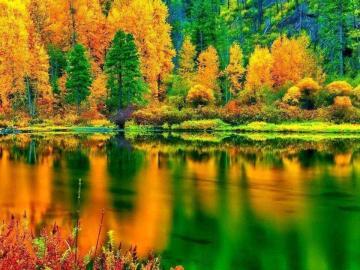 描写秋天的唯美诗句