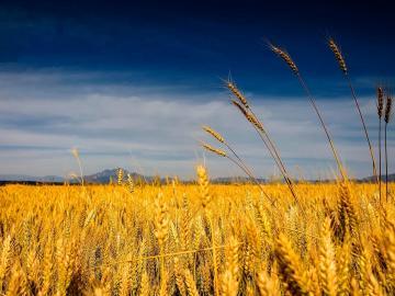 十月将至莫负时光的唯美说说:若不是终点,请微笑一直向前