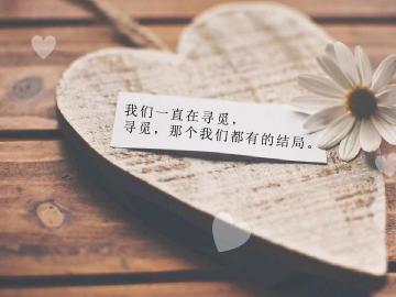 关于爱情与金钱的哲理句子